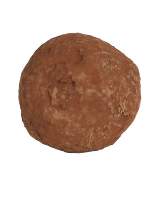 Griottine truffle with dark chocolate and cocoa powder